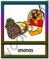 Ananas - ETDR