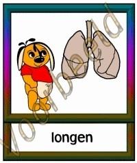 Longen