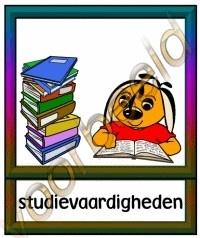 Studievaardigheden - SCHV