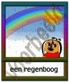 Een regenboog - WR