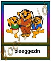 Pleeggezin - ZorgH