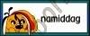 Namiddag - NP -DAGIN