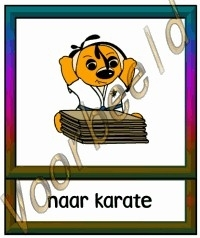 Naar karate