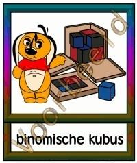 Bionomische kubus - WRK