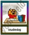 Studiedag - VAK
