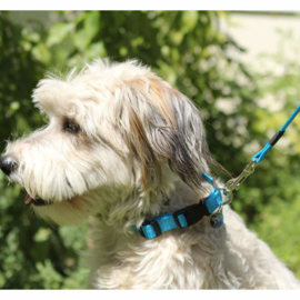 Rogz for Dogs Halsband met looplijn