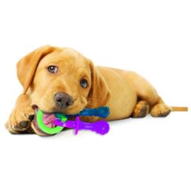 Nylabone Puppy Theeting Chew Speen