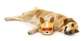 FuzzYard Doggoforce
