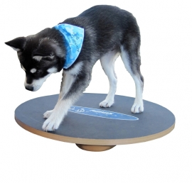 FitPAWS Wobble Board 50 cm