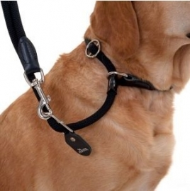 Hunter Freestyle Retriever Looplijn met halsband 260 cm