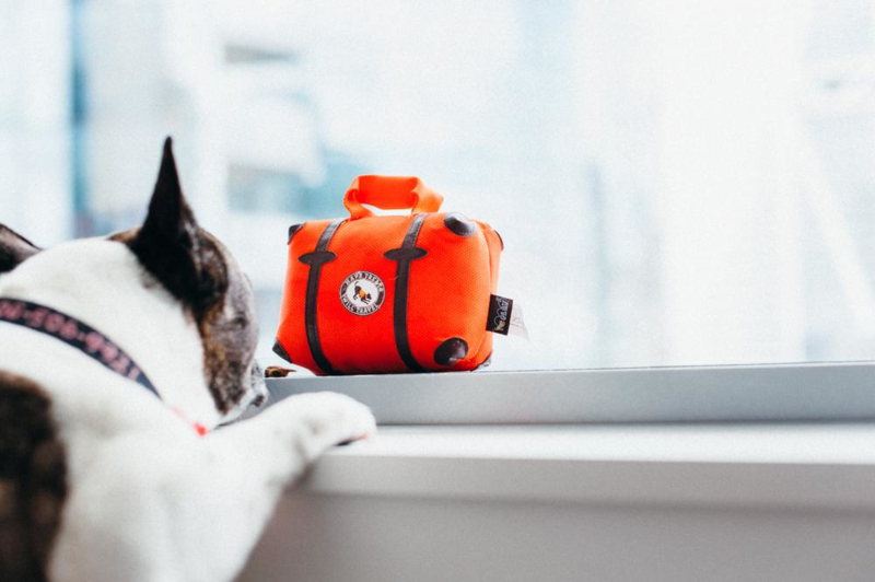 P.L.A.Y. Pet  Globetrotter Suitcase