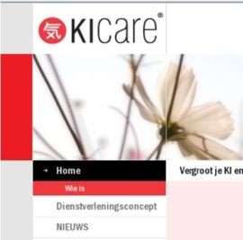KICARE - totaalpakket websitebeheer