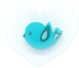 Vogeltje Turquoise