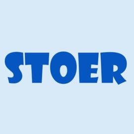 Baby t-shirt baby blauw | Stoer