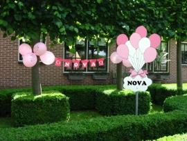 Geboorteborden - roze ballonnen  met naambord