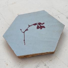Tegeltje tegeltje aan de wand - bloem rood op pastel blauw