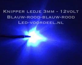 Knipper ledje 3mm Blauw -Rood 12 Volt