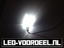 LEDjes 10mm Wit  12 Volt