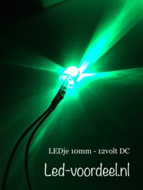 LEDjes 10mm Groen  12 Volt