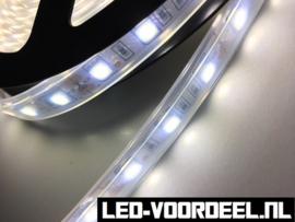 LED Strip - Wit - 5050 smd - IP67 - ZV