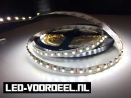 LED Strip - Helder wit - 600 LEDs - IP20 - ZV