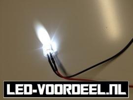 LEDjes 10mm Wit  12 Volt