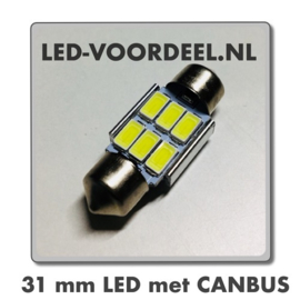 Auto Interieur 31mm led Canbus Wit CW5