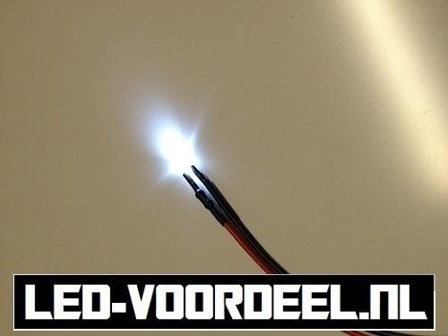 LEDjes 3mm Wit  12 Volt