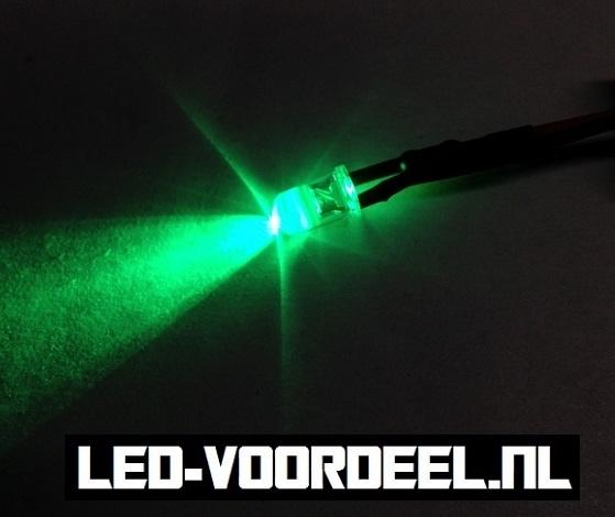 LEDjes 5mm Groen  12 Volt