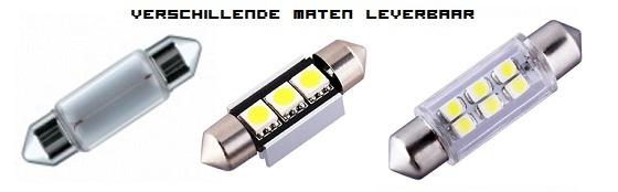 Led buislampjes verschillende maten leverbaar