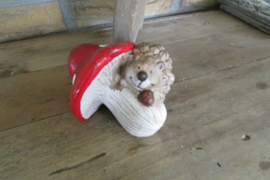 Egel op paddenstoel