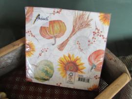 Pompoen/herfst servetten (normaal formaat)