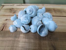 Schelpen, kokkels licht blauw  75 gram nr23