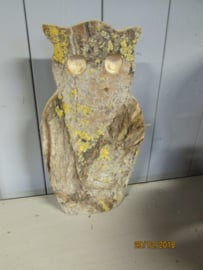 Uil van hout en schors