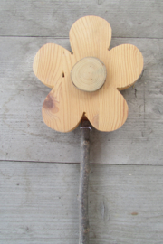Bloem naturel 15 cm