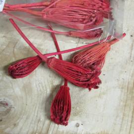 Zakje wild flower red 10 gram