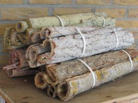 Bundel schors, 50 cm , white wash, groen, naturel, rood/naturel