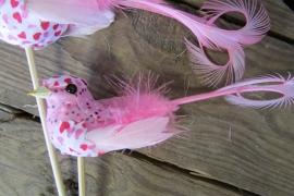 Vogeltje op steker roze per 2