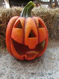 halloween windlicht 40 cm (alleen af te halen)