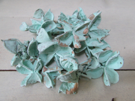 Cotton pods zakje 40 gram, mint (nr 57)