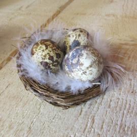 Nestje klein met 3 eitjes