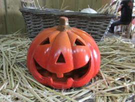 Halloween  windicht 20 cm (alleen af te halen)