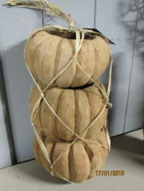 Pompoenen van kokosnoot per 3