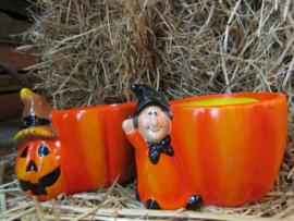Halloween heksen plantenbakje