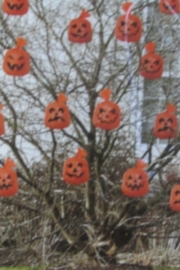 Halloween zakjes pompoen