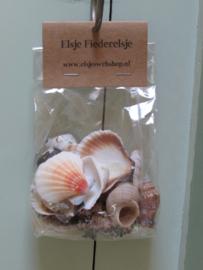 Zakje met schelpen gesorteerd 200 gram (nr 30)