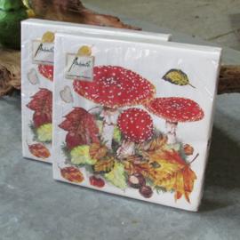 Servetten paddenstoel - Fly agaric