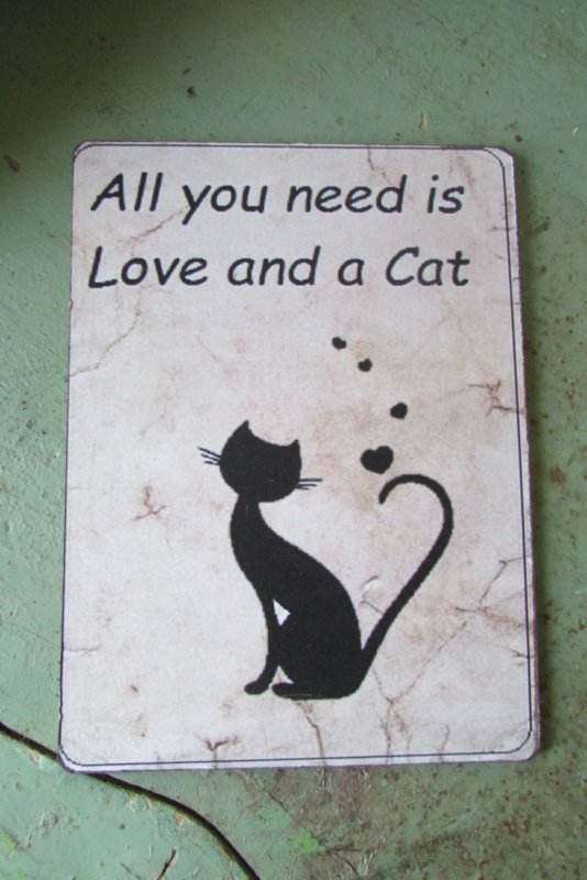 All you need is.... 19x14 cm