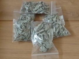 Salie 10 grams zakjes