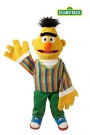 LS101 Bert